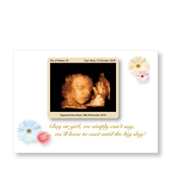 Daisy Baby Scan Card